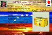 COCOZHI cocoa extracto de granoderma