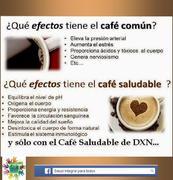 Café 2 en 1- Café 3 en 1 DXN