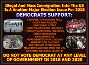 Immigration Issue 2018 Election