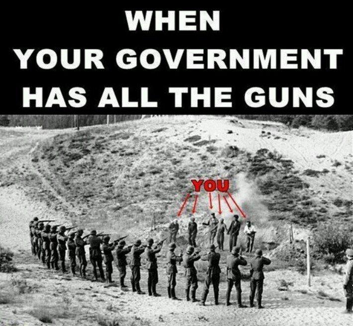 GOVERNMENT GUNS