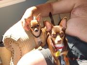 Ralph & Diego