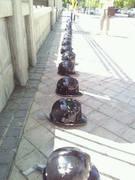 Equinoccio de los cascos negros No LSP