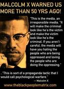 THE PROPAGANDA MEDIA