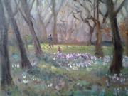 Spring at the Botanic gardens.