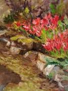 Spring at Tintern.