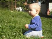 Pepánek v trávě
