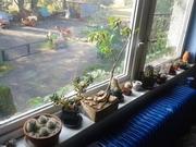 Mé okno. :)