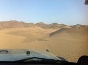 desert on the western Arabian peninsula