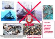 Stop Pesca Masiva