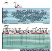 La Pesca Profesional