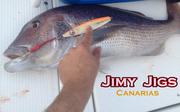 Jimy Jigs 1