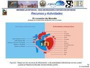 Analogía de los Recursos y Actividades de Moodle con el Corazón