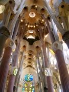 Gaudi's Genius