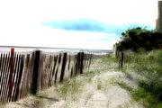 Beach Fence 07_ JU8S5856