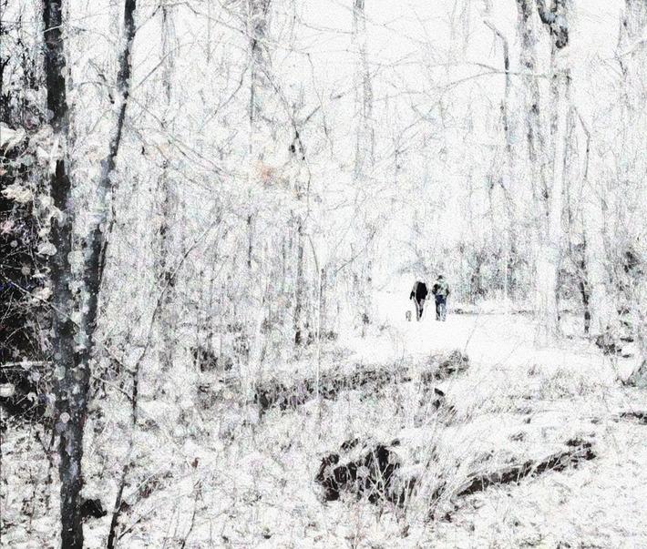 Winter Walk2