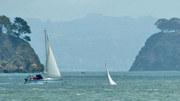 Sunken Folkboat