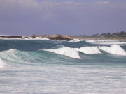 Surf's Up at Monterey #2