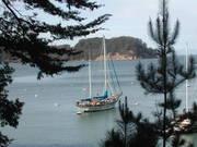 Angel Island mooring