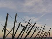 marés | tides