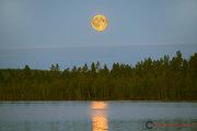 Fullmånen över Linkosjön i Moskosel den 25 maj kl. 23:28.