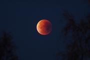 Stackar månen
