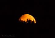 Månnedgång_CPC6367-w