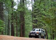 Diamond Creek - Eldorado Nat'l Forest, CA