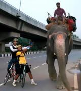 Biking India - India Independence Day Delhi 100km cycle 006 (911x1024)