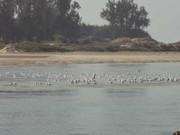 mumbai goa coastal route