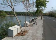 morning cycle ride