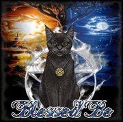 blessed kitty