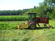 2nd cutting of hay
