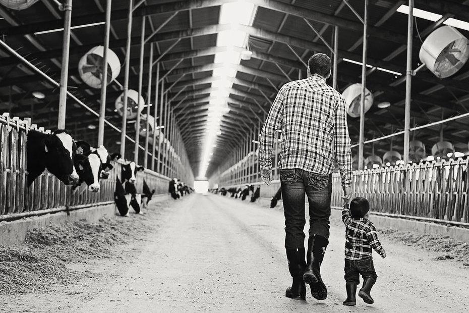 Father/son alley walk
