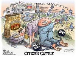 Citizen Cattle