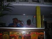 DJ @ ALPHABET LOUNGE