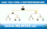 MLM structure  Find 2