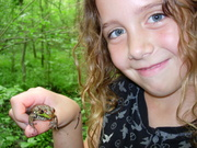 Isabel & a Green Frog