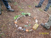 forest school 030