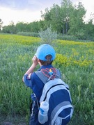 """A boy scout using the """"rule of thumb"""" to safely view wildlife."""