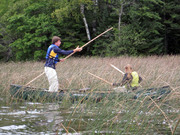 Collecting Wild Rice