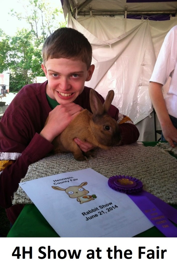 4H County and State Fair