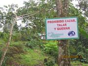 BIO AZUL TINGO MARÍA PERU