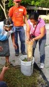 ACODIHUE,GUATEMALA