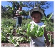 Agricultura familiar COMSA