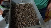 Nivel de tostado de café