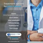 Treatment Options for Liver Cancer