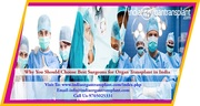 Why You Should Choose Best Surgeons for Organ Transplant in India