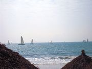 Sail boats on the bay 2