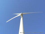 08-Windfarm10