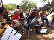 bluegrass jam session -Austin, Texas